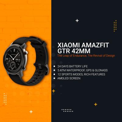 Xiaomi Huami Amazfit GTR 42mm Smart Watch